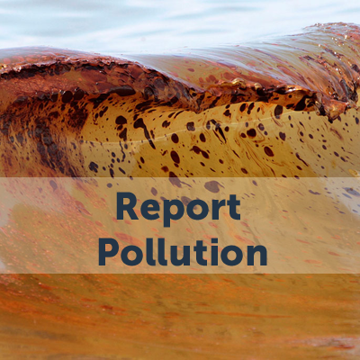 Report Pollution