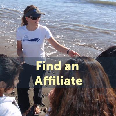 Find Affiliate