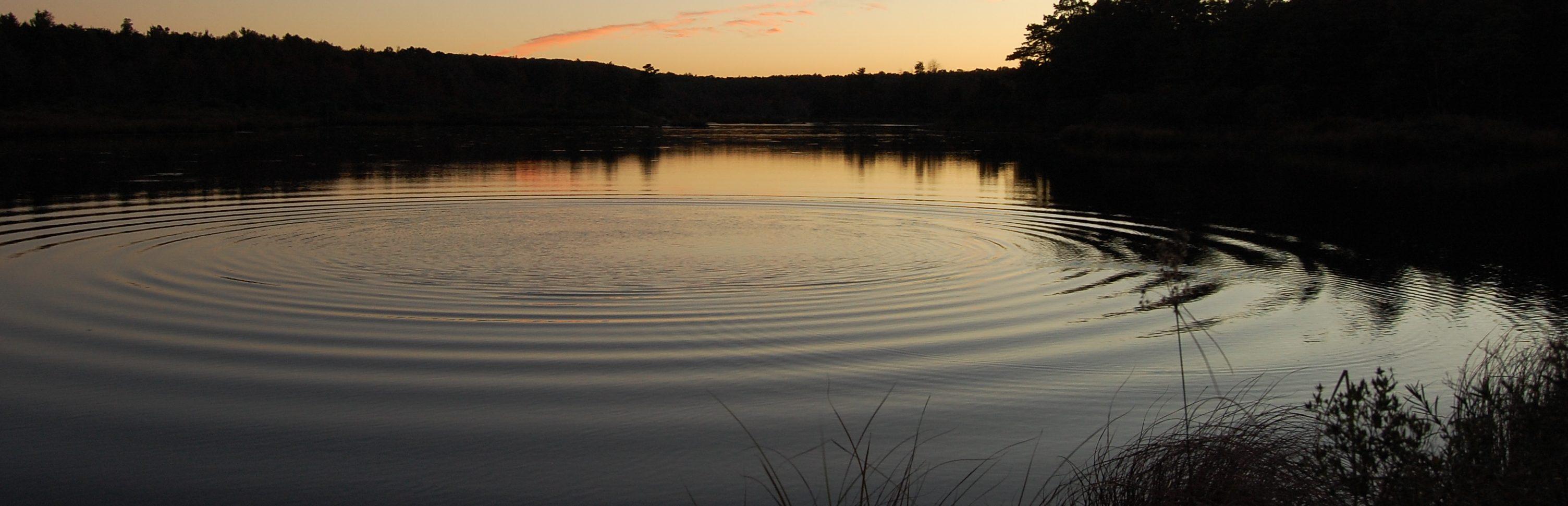 freshwater lake ripples sunset