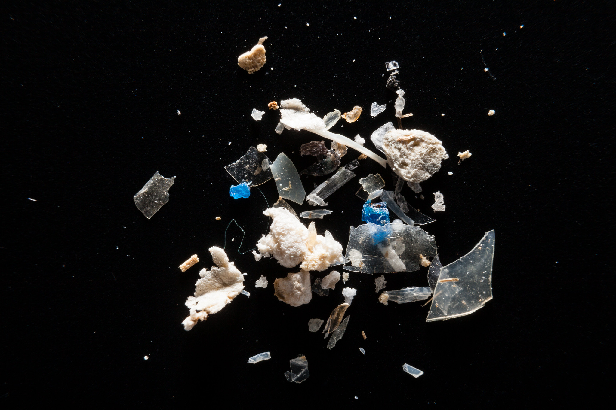 What-are-microplastics